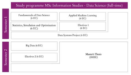 Curriculum schema Data Science full-time