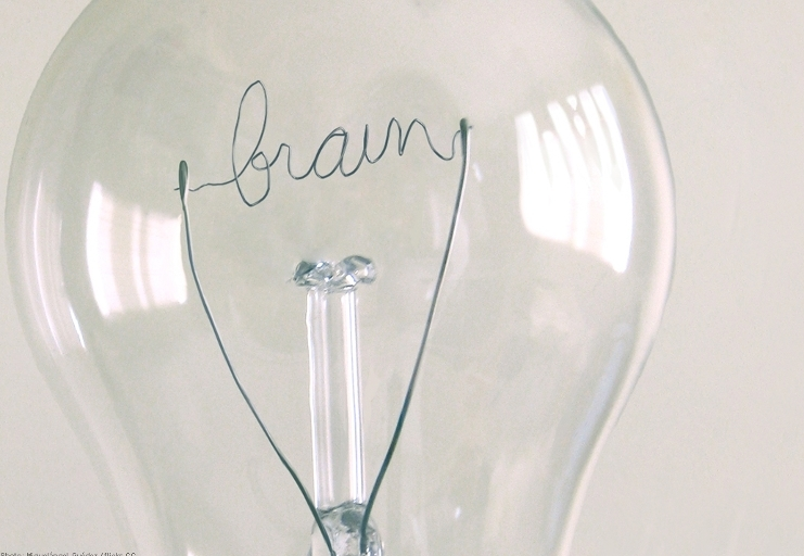 Lightbulb 'brain'