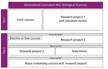 Generalised Curriculum MSc Biological Sciences