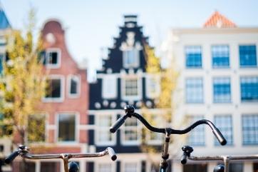 Obtaining A Phd At The Uva University Of Amsterdam