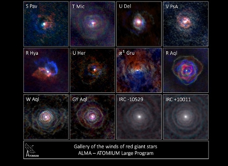 Gallery of stellar winds around cool ageing stars, showing a variety of morphologies, including disks, cones, and spirals. The blue colour represents material that is coming towards you, red is material that is moving away from you.